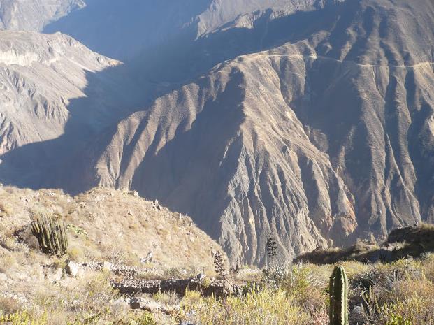 veduta del colca canyon