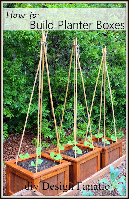 raised beds, raised beds on a slope, vegetable garden, building project, diyDesignFanatic.com, building project