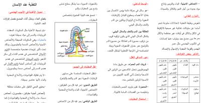 ملخص شامل علوم الطبيعة و الحياة رابعة متوسط PDF