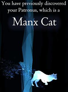 Gatto dell'Isola di Man, della mamma di Eleonora