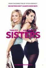 Sisters (2015) DVDRip Latino