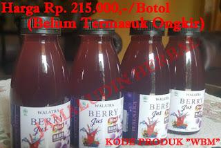 http://pengobatanmultikhasiat30.blogspot.co.id/p/obat-herbal-walatra-berry-jus-selamat.html