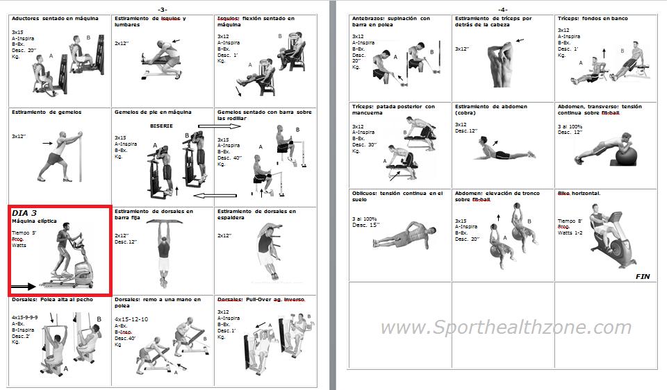 Rutinas de ejercicios entrenamiento fitness pesas for Gimnasio musculacion