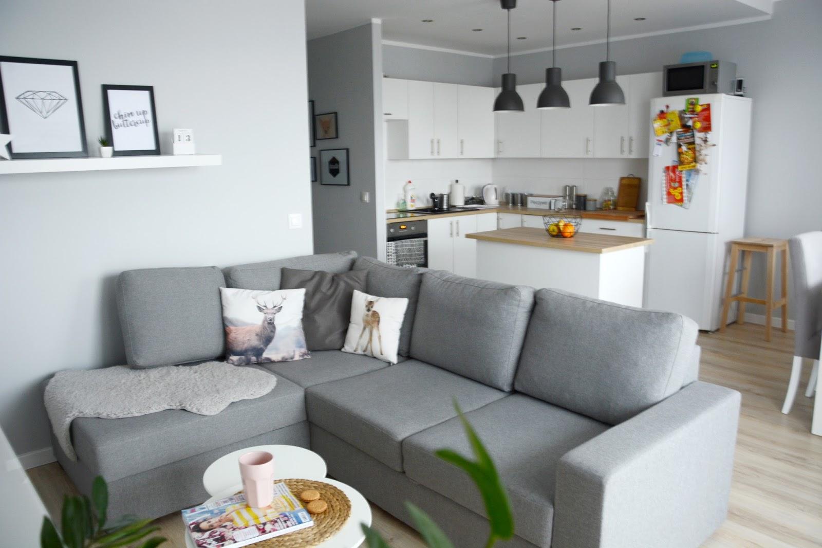 Projekt Tanie Mieszkanie Salon Kuchnia I Przedpokoj Na Biurku Oli