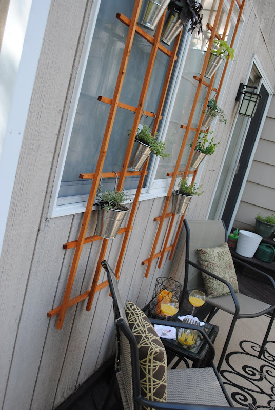 Trellis on the windows