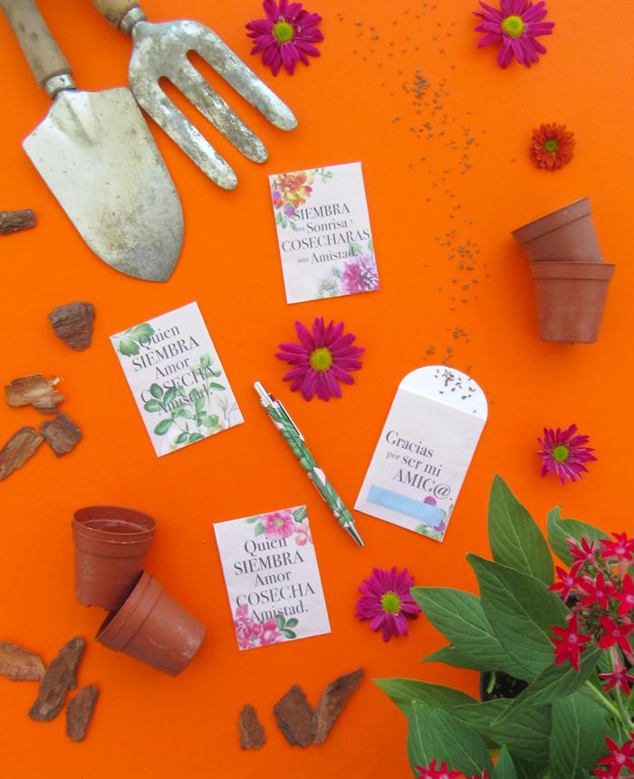Imprimible gratuito sobres semillas flores para amigos, enamorados, Galentines, hazlo tú mismo, manualidades