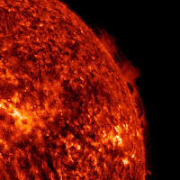 Hedgerow Prominence