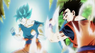 Dragon Ball Super – Dublado – Episódio 120