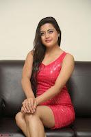 Shipra Gaur in Pink Short Tight Dress ~  Exclusive Poshoot 84.JPG