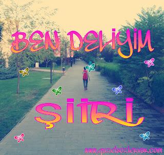 Ercan intaş ben deliyim şiiri