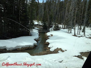 Snowy Stream Yellowstone