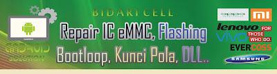 bidari cell
