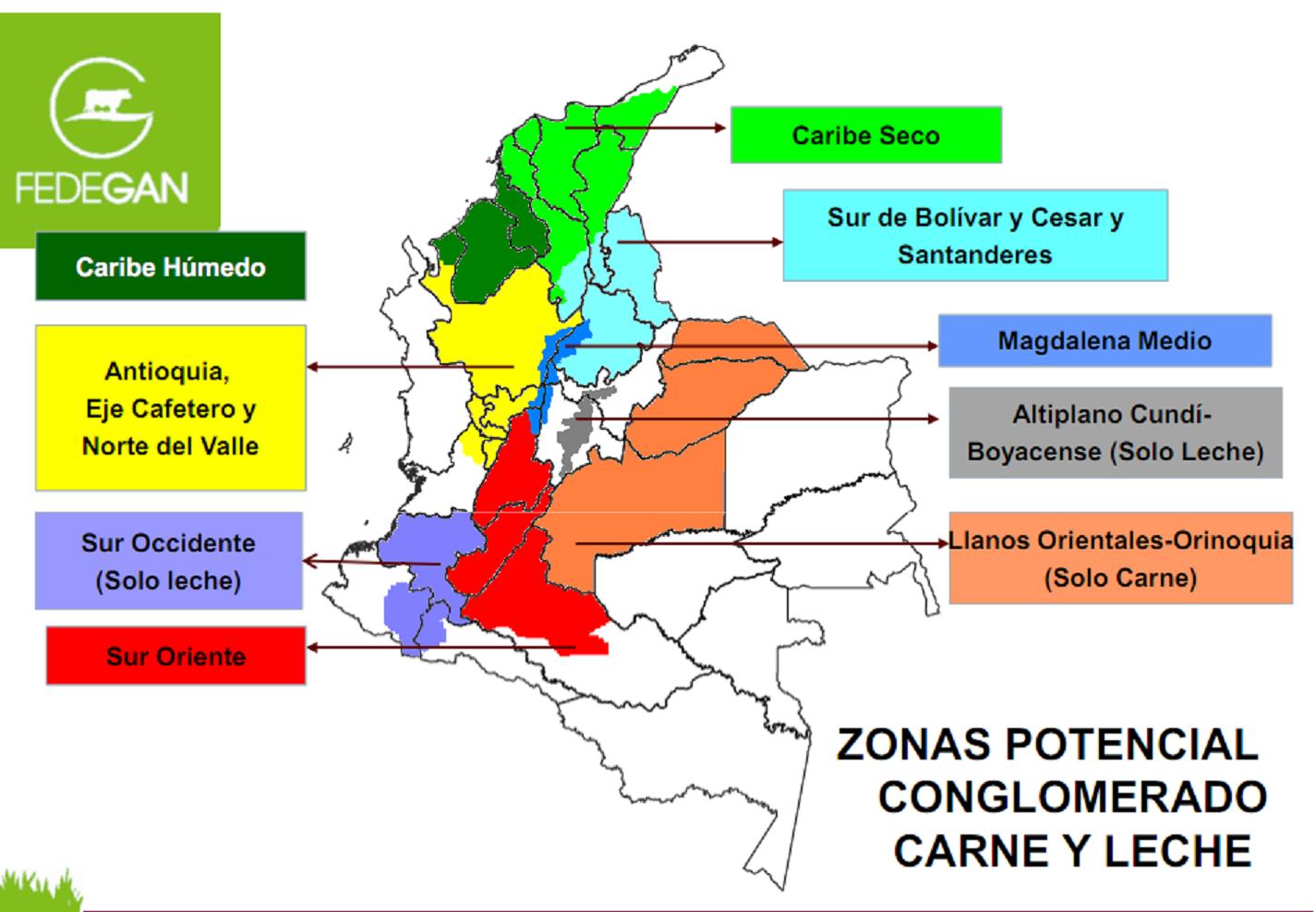 Carne del mercado colombiana de tetas grandes ana ebano recogida y follada - 5 5