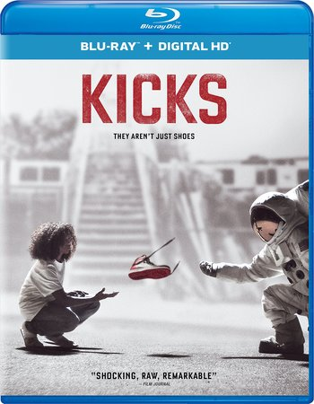 Kicks (2016) Dual Audio Hindi 720p BluRay