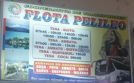 Cooperativa de Transportes Flota Pelileo en la ciudad de Tena