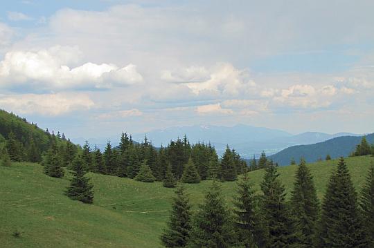 Przełęcz Medzirozsutce (1200 m n.p.m.).