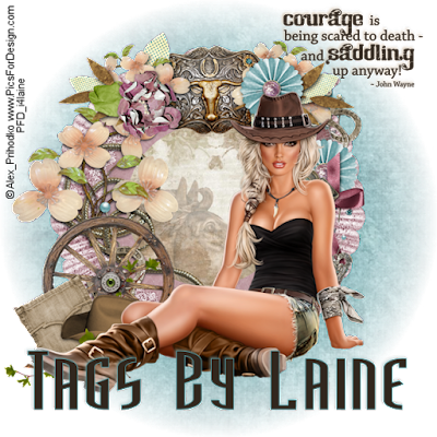 https://lanes7152.blogspot.com/search/label/TagsbyLaine
