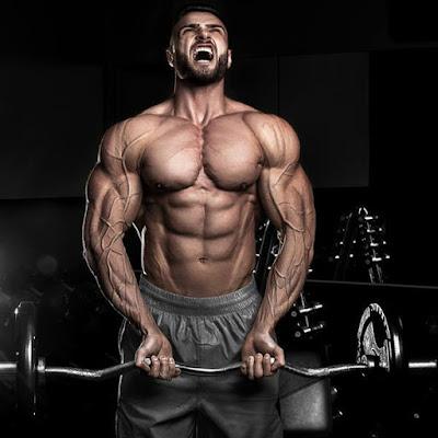 """Résultat de recherche d'images pour """"biceps reps"""""""