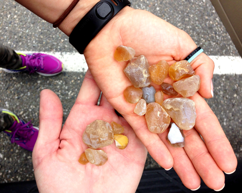 Whidbey Island, Maxwelton Beach, Aunie Sauce, Agate Hunting, Searching for Agates, Whidbey Island Agates