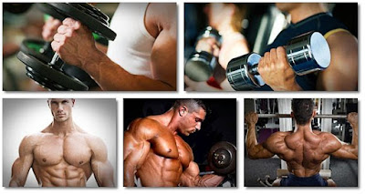training techniques bodybuilding program