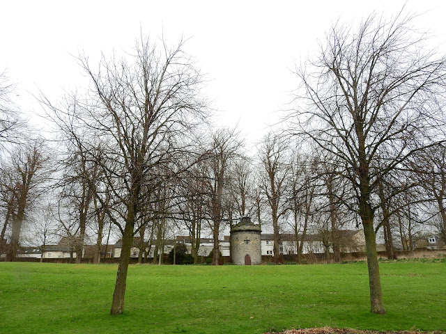 Trees and fields in park