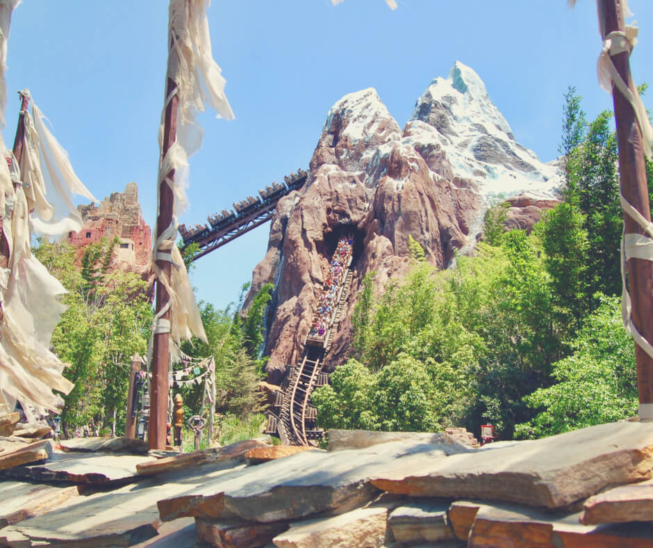 Expedition Everest, a roller-coaster in Animal Kingdom, Walt Disney World. One of the reasons you should go to Walt Disney World.