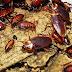 เผยสุดยอด วิธีกำจัดแมลงสาบ แบบง่ายๆ ทำทีเดียว ตายยกฝูง