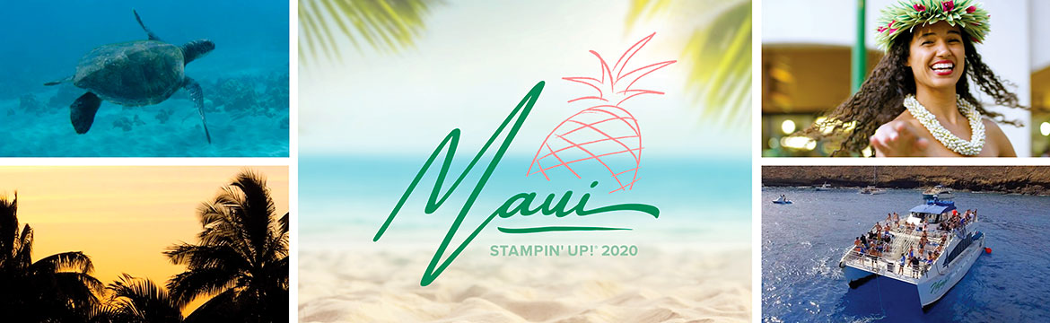 Help me go to Maui in 2020