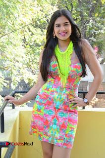 Telugu Actress Prasanna Stills in Short Dress at Inkenti Nuvve Cheppu Press Meet Stills  0052.JPG