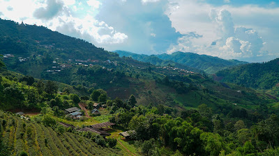 Views of Mae Salong and the surrounding countryside from the tea plantation