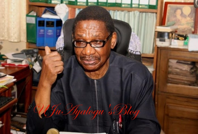 Sagay reveals those working against Buhari's anti-corruption war