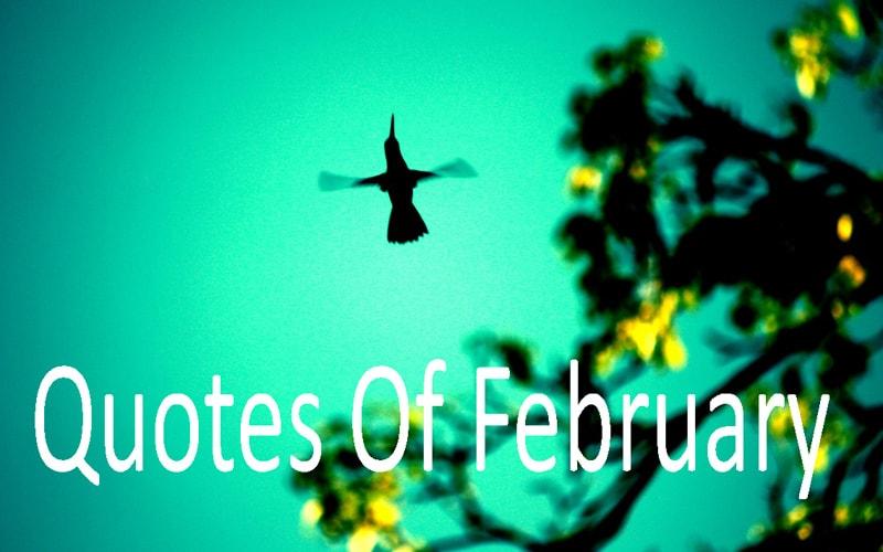 kata bulan februari