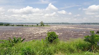 Dead people sometimes are brought with the Congo River