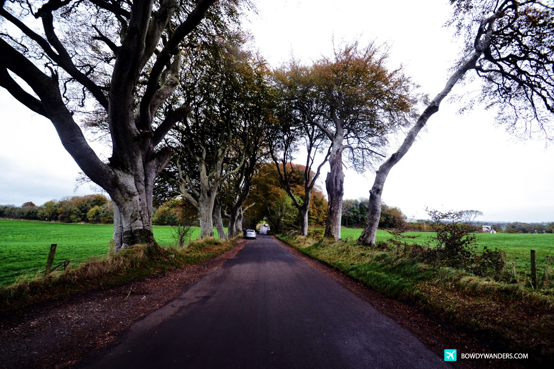 bowdywanders.com Singapore Travel Blog Philippines Photo :: Northern Ireland :: The Dark Hedges: The Drop Dead Gorgeous Haunting Spot in Northern Ireland