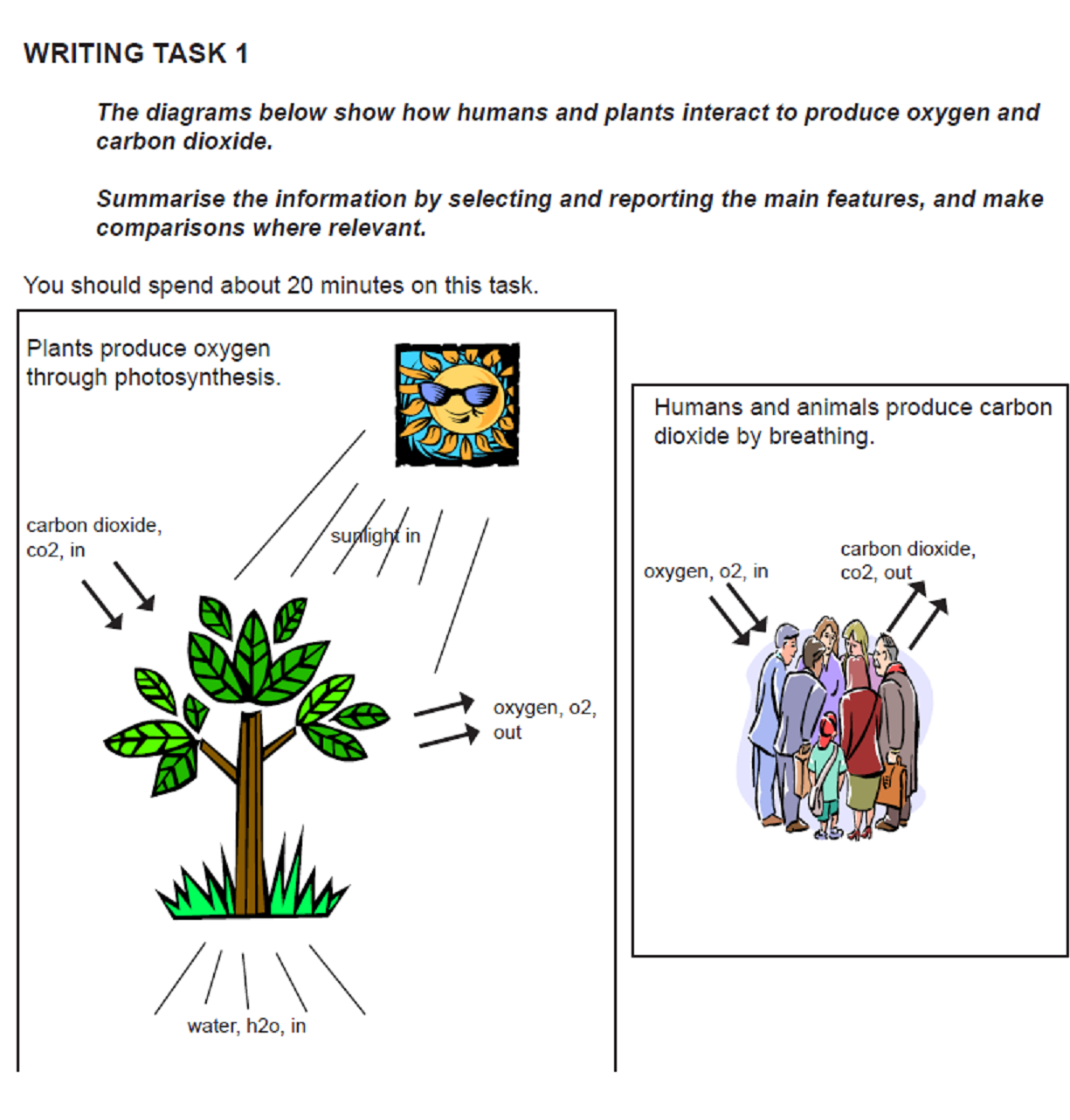 A journey to remember plant photosynthesis ielts task 1 the diagrams demonstrate how plant photosynthesis process is related to human breathing process as can be seen it is a mutual relationship that benefits ccuart Images