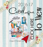 Stampin' Up! Catalogue 216-2017