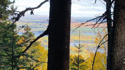View of Autumn Foliage of New England from a Mountain in Maine