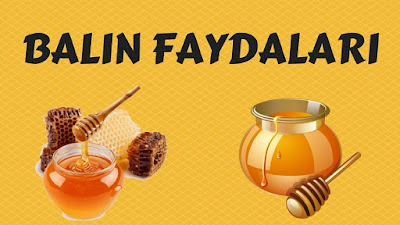 bal, balın faydaları, polen, çam balı, çiçek balı, karakovan balı, şifa kaynağı bal,