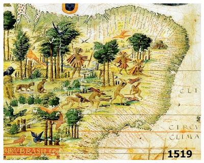Colonização do Brasil, Exploração do Pau-Brasil e Pecuária