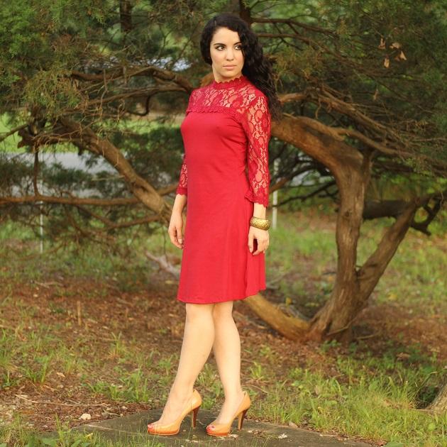 Burgundy Lace Sleeve Dress