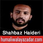 http://www.humaliwalayazadar.com/2018/02/shahbaz-haideri-noha-special-kalam-2018.html