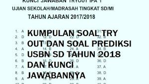 Soal Try Out USBN SD Tahun 2018 dan Kunci Jawabannya