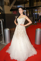 Rukshar Mir designer Anarkali Gown at 64th Jio Filmfare Awards South  2017 ~  Exclusive 117.JPG