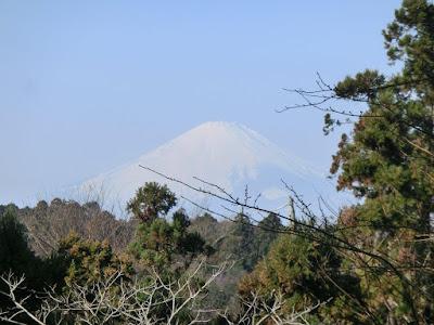 源氏山からの富士