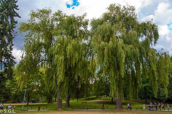 Parque de las islas de Toronto