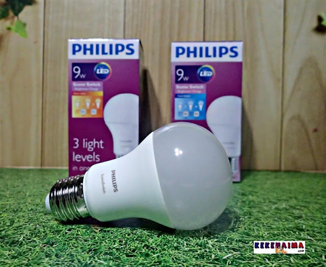 lampu philips sceneswitch led