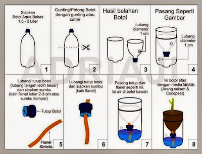Cara Menanam Hidroponik Paling Sederhana Dengan Sistem Wick