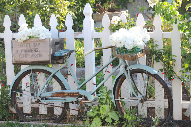 ~Vintage Garden Bicycle U0026 Dahlias And Simple U0026 Sweet Fridays #231~