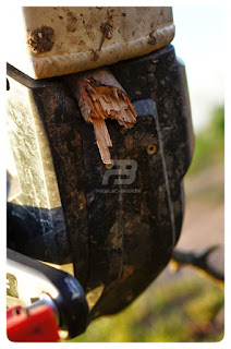 Dieser Stock hat sich in das Motorgehäuse des eBike Antriebs gebohrt