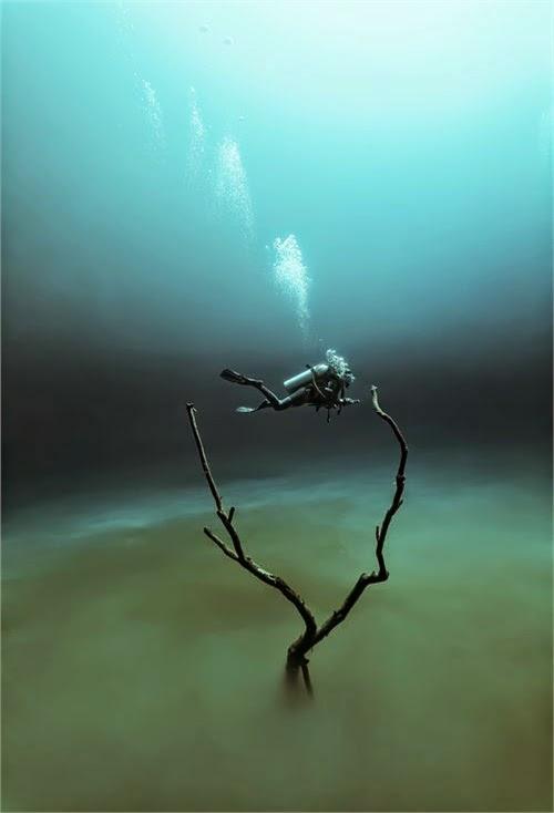 Cenote Angelita, Mystical Underwater